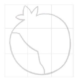石榴可爱简笔画