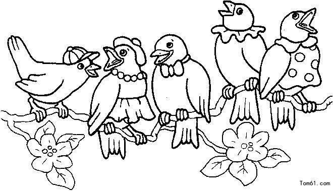 鸟-简笔画图片-儿童资源网手机版