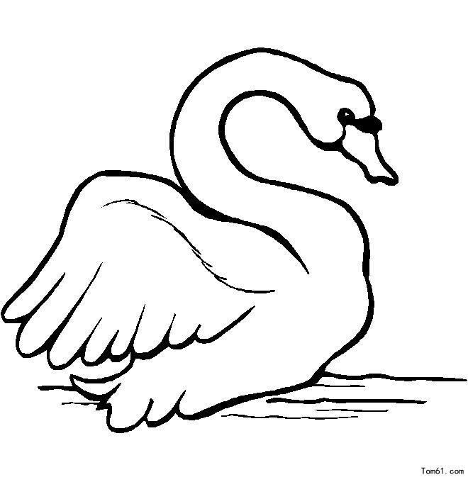 鹅-简笔画图片-儿童资源网手机版