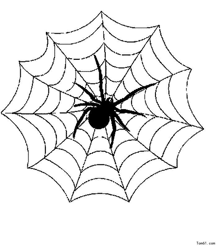 蜘蛛-简笔画图片-儿童资源网手机版