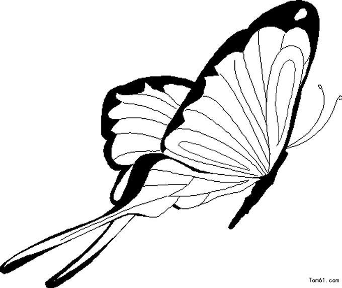 蝴蝶小仙女简笔画