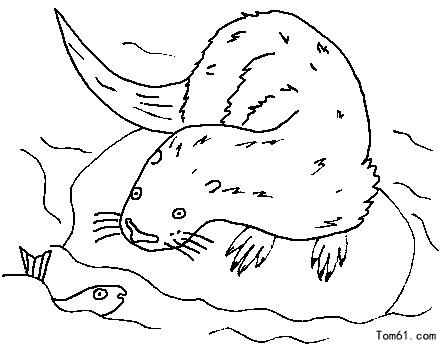 动物加场景简笔画