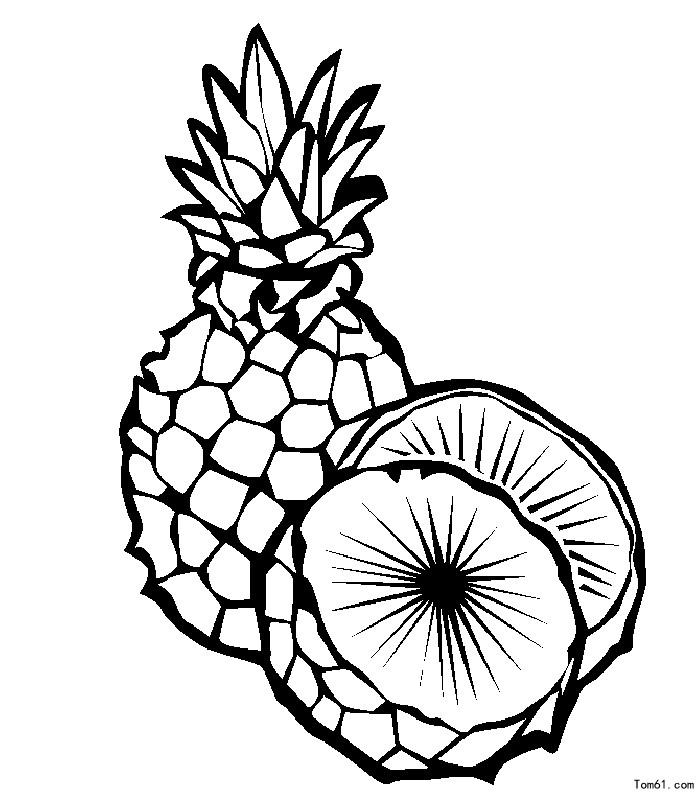 菠萝房子简笔画图片