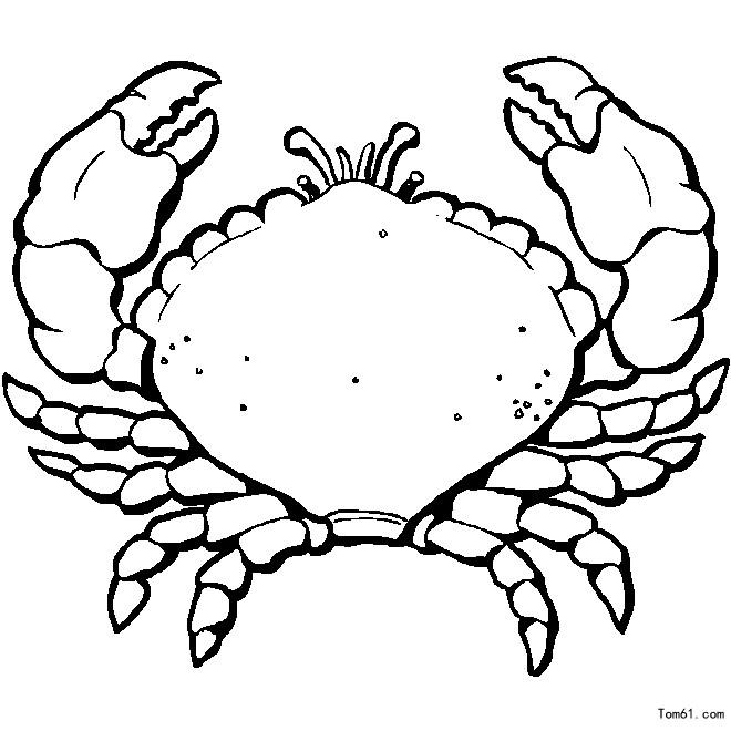 螃蟹大餐简笔画