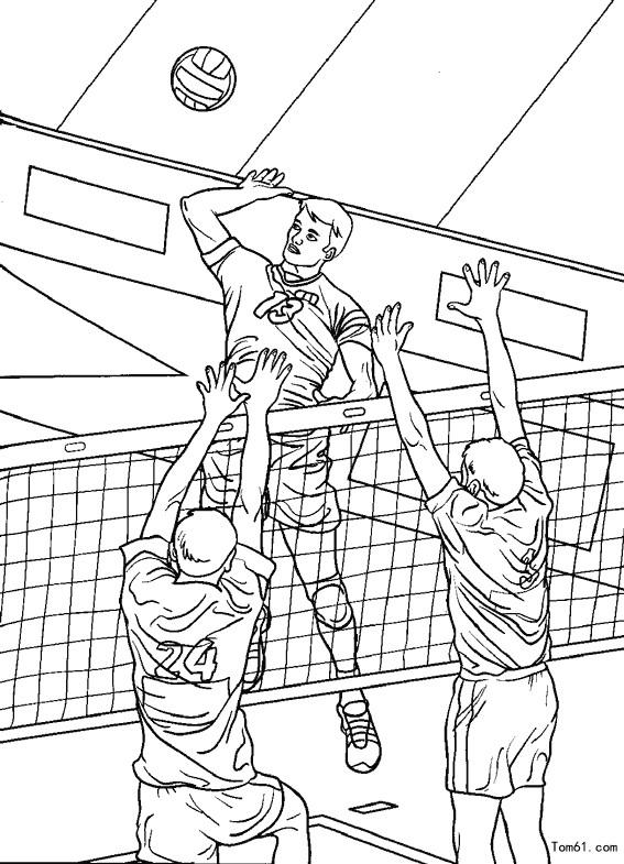 排球-简笔画图片-儿童资源网手机版