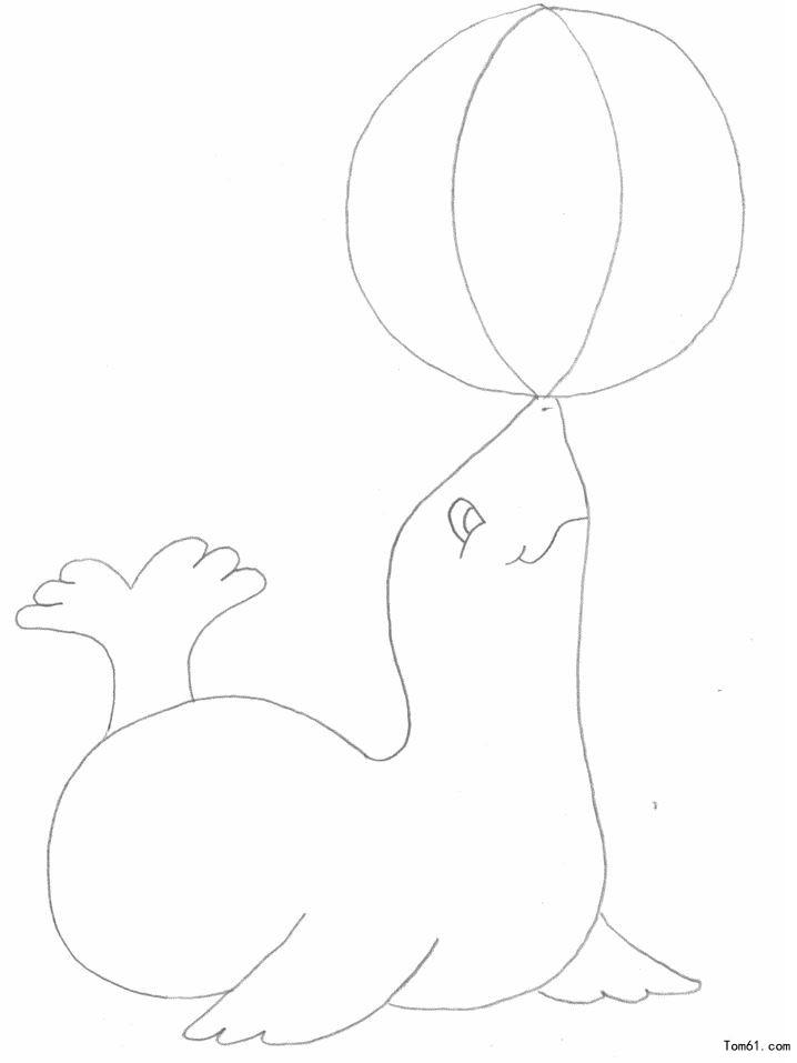 海豹简笔画可爱
