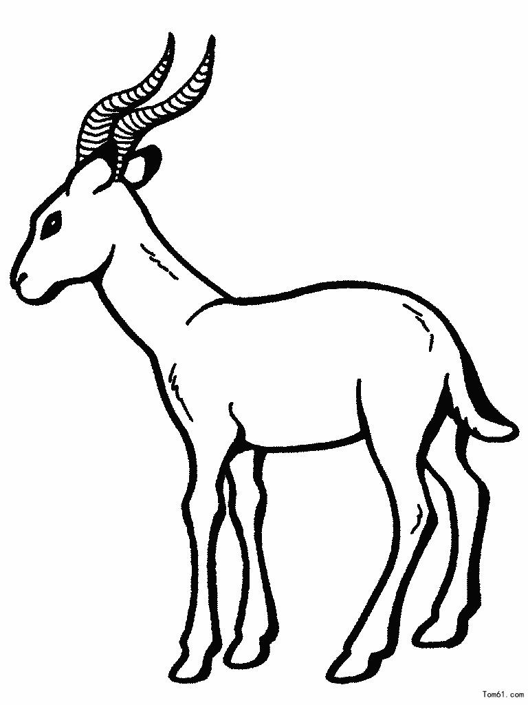 羊-简笔画图片-儿童资源网手机版
