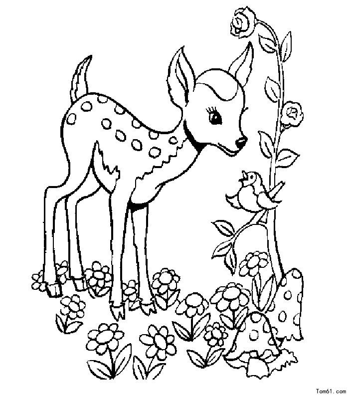 鹿-简笔画图片-儿童资源网手机版