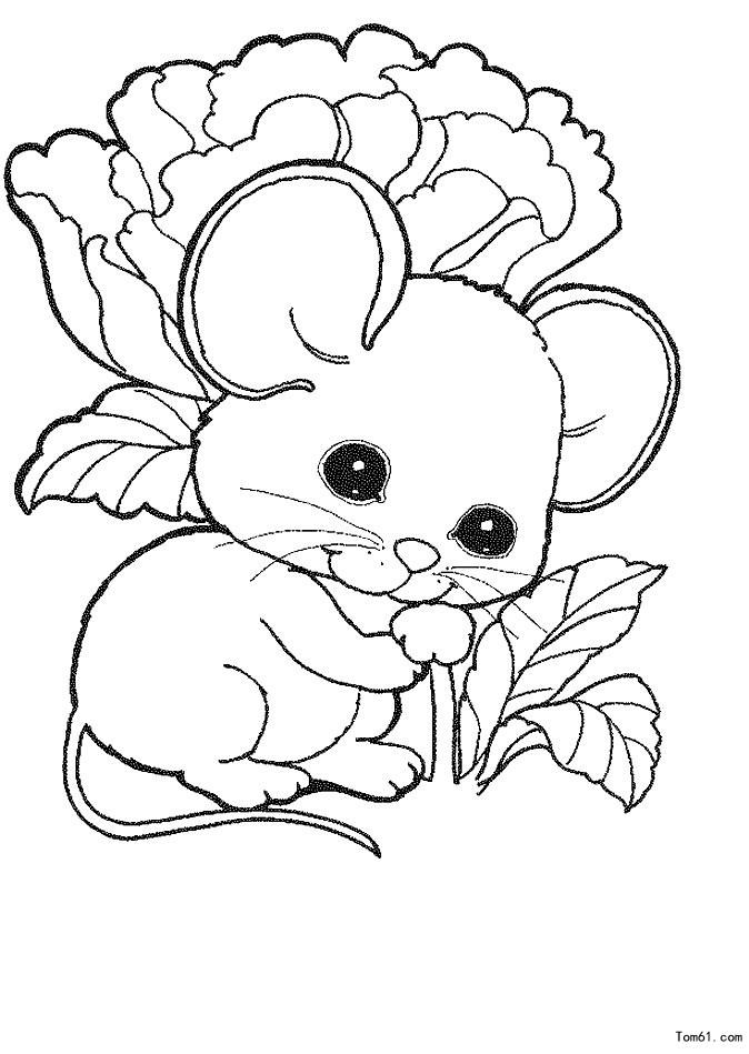 鼠年年画简笔画图片