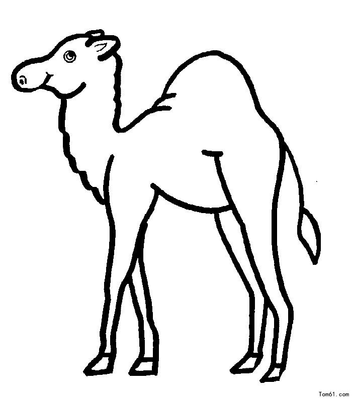 骆驼行走沙漠简笔画