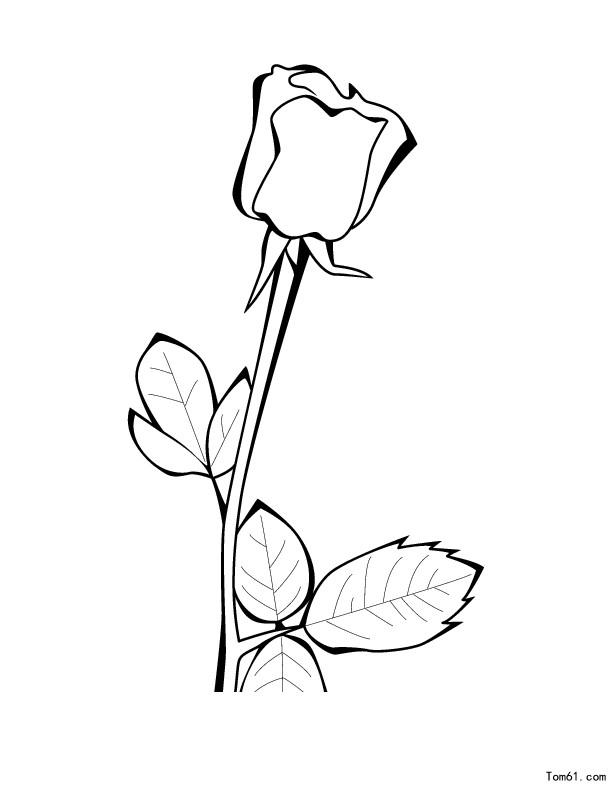 玫瑰-简笔画图片-儿童资源网手机版